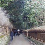 京都旅行行ってきました!