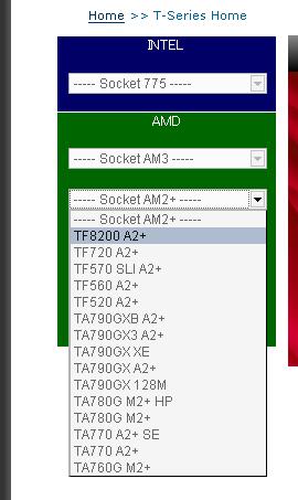 TF8200 A2+を選択しました