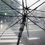 愛用傘ありますか?