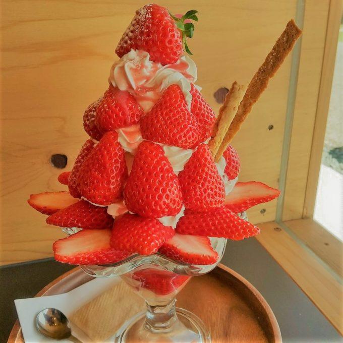 いっぱいイチゴのパフェ